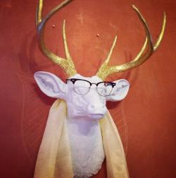 deer head hotelephant