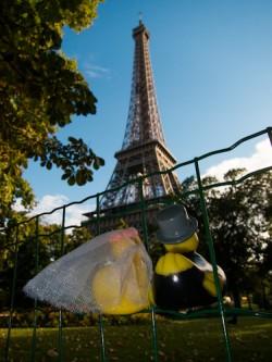 Duckies in Paris