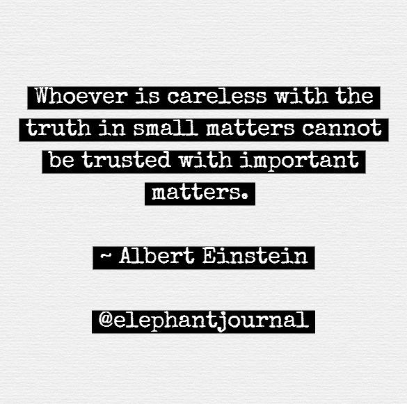 elephant truth Albert Einstein Quote