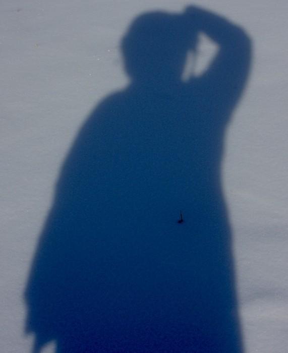 shadow self_MT2014_Jennifer_Moore