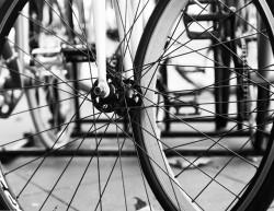 SF bicycle