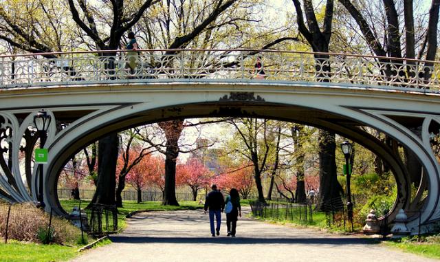 spring walk park exercise