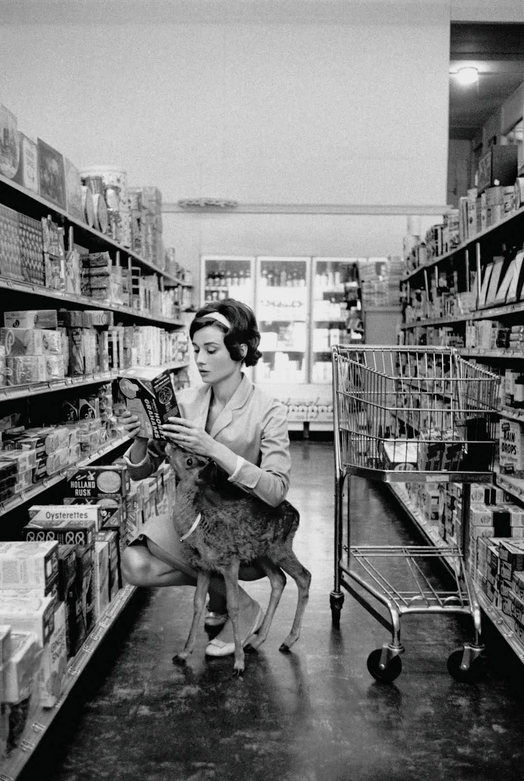 When the British actress was making her 1959 film Green Mansions, directed by then-husband Mel Ferrer, the animal trainer on the set suggested that she take her on-screen sidekick, a baby deer, home with her so that he would learn to follow her. Audrey's inner calmness was perfect, and the deer thought she was her mother. Nicknamed 'Ip', the deer would cuddle Audrey and accompany her to the supermarket in Beverley Hills.