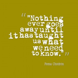 Pema Chodron quote let go for elephant journal