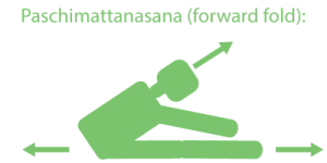 Palintonicity Forward-Fold