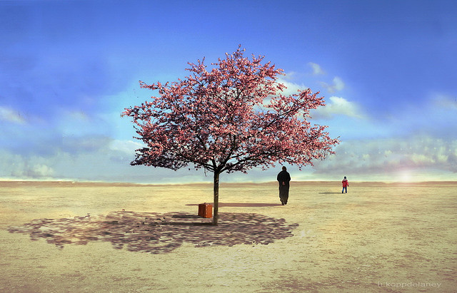 """""""Tree of Life in Spring"""" by Hartwig HKD from Flickr"""