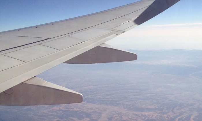 PlaneWing2_Lily MilkovicJakal