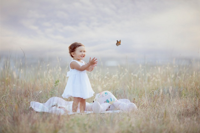 babybutterfly