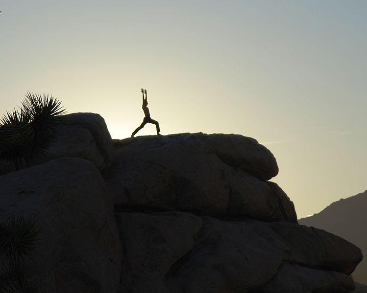http://commons.wikimedia.org/wiki/File:Joshua_Tree_yoga_-_warrior_1b.jpg