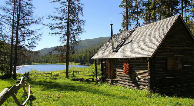 sunny cabin
