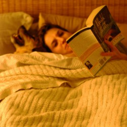 book bed dog tired read