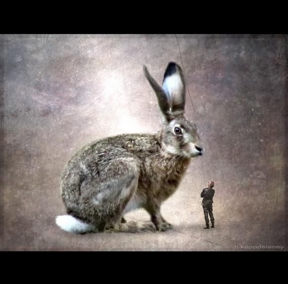 bunny person