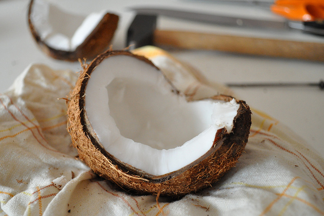 coconut opened shuck