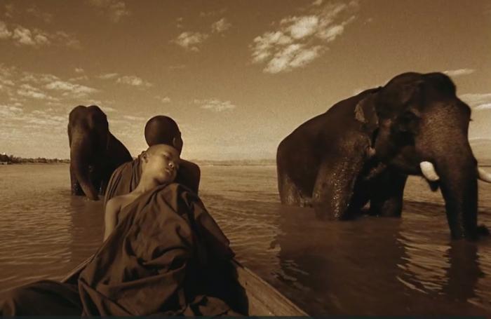 elephantmonkfilm