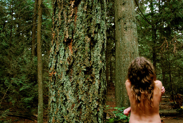 naked forest