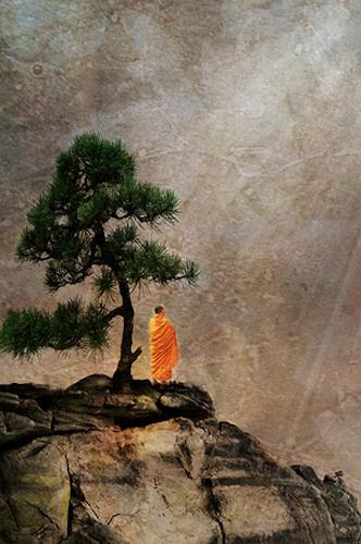 silence, monk