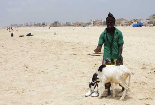 Senegal4