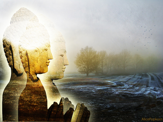 1302521145-Buddhanature