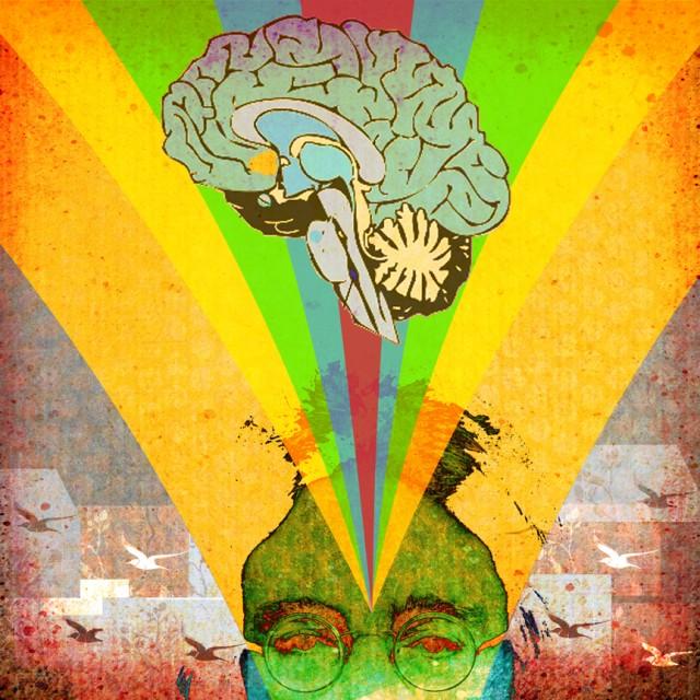 the mind brain