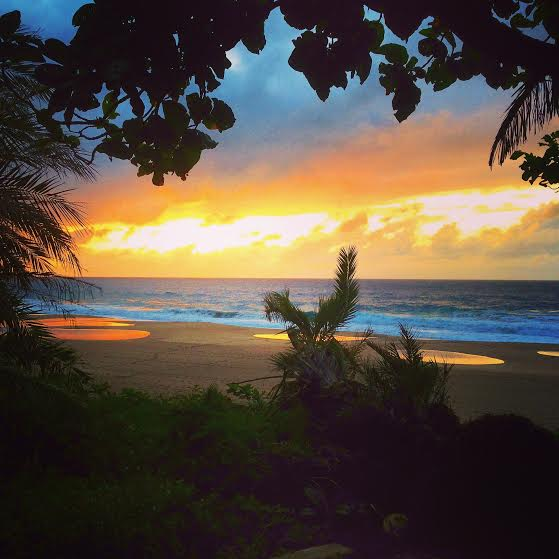 beach beauty sunset