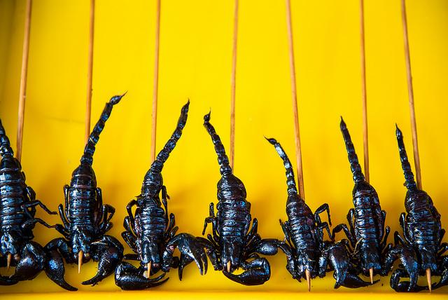 scorpions on a stick