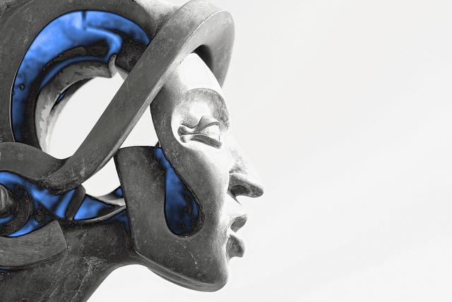 tech head evolve