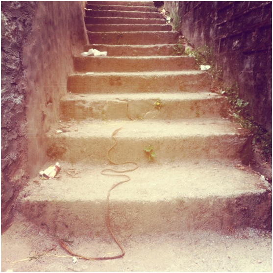 authors picture stairs kundalini
