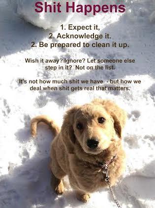 cissy whites puppy
