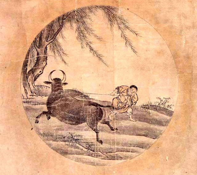 catching the bull