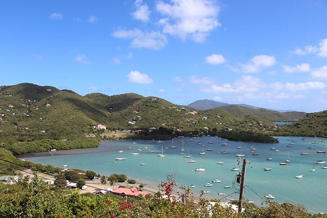 Jeanne-Eisenhaure-Coral-Bay