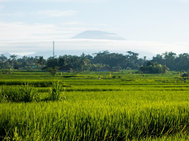 Ubud Bali View over Mount Agung by Yaisa Nio