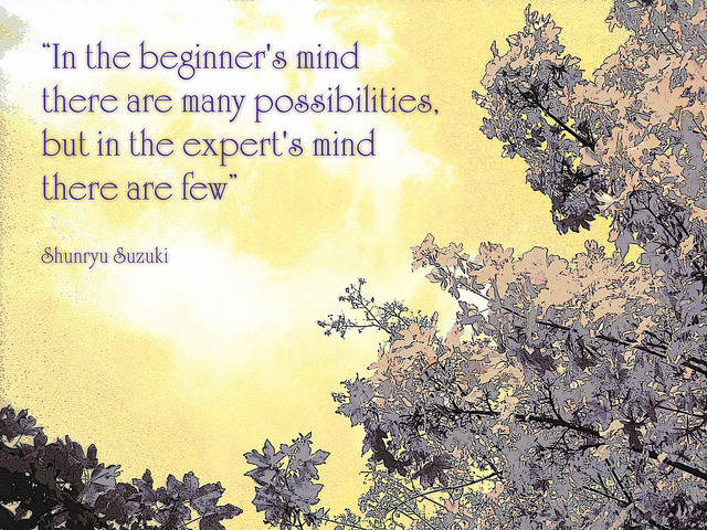 Embracing Beginner's Mind. | elephant journal