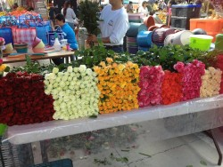 marketflowers3