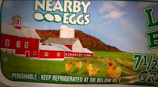 costco eggs