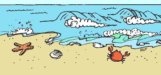 beach900