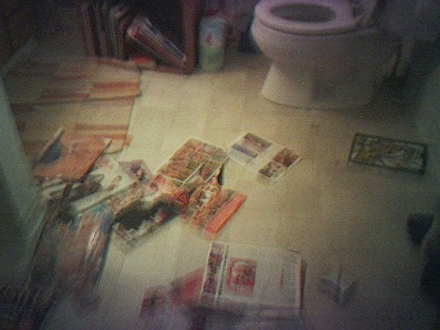 porn magazines bathroom