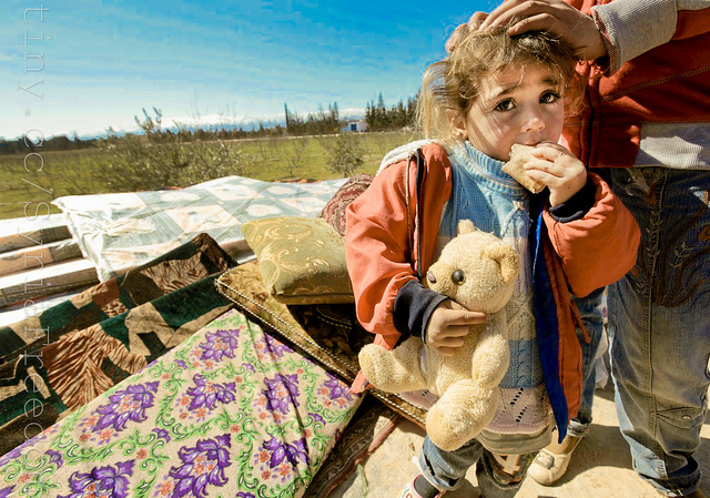 Refugees little girl with teddy