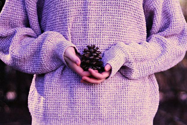 pinecone nature