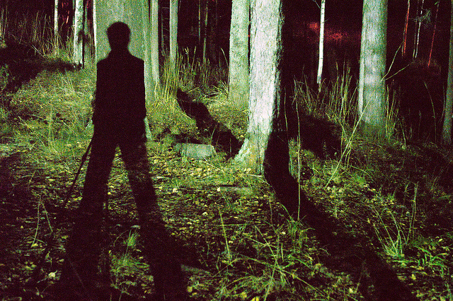stranger shadow forest night