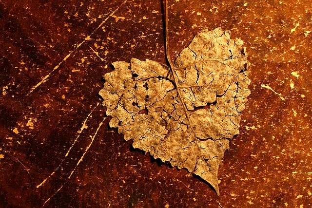 heart, gold, broken heart,