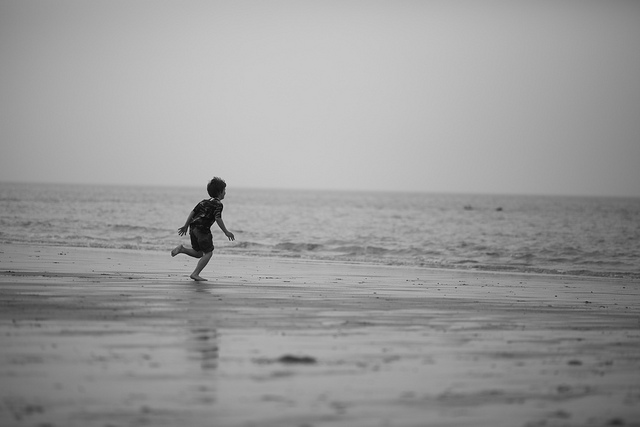 Running to the North Sea, Alexandre Dulaunoy, Flickr