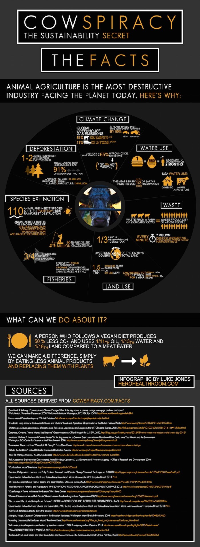 Cowspiracy-Infographic 1