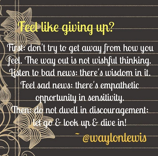 Give up Waylon Lewis opportunity obstacles