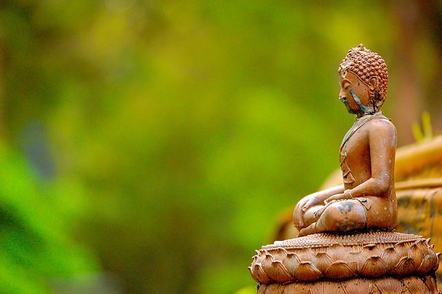 buddha green forest statue