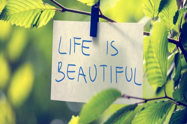 header-life-is-beautiful1