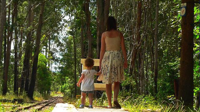 walk, child, tracks, woods