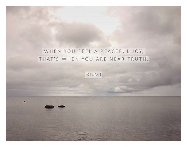 Rumi Love Quotes Fascinating 48 Rumi Quotes That Reminded Me What I Had Forgotten About Love
