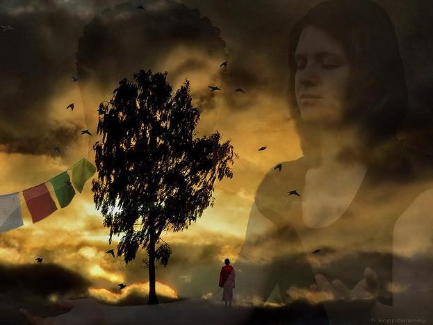 walk away, pain, nature