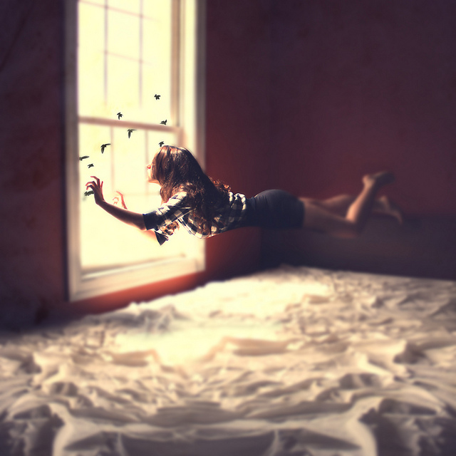girl, birds, dream, window, fly, sunlight