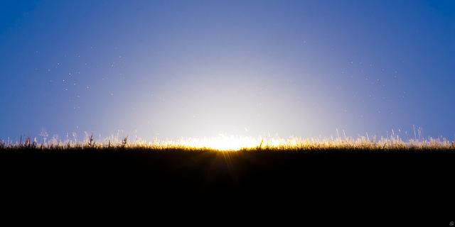 """""""sonnenbad der eintagsfliegen"""", Leo Grübler, Flickr"""